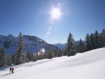 Winter & Wellness im Allgäu