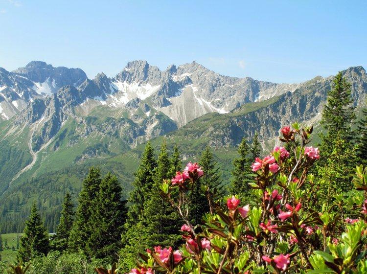 Bergwanderung Riedbergerhorn im Allgäu