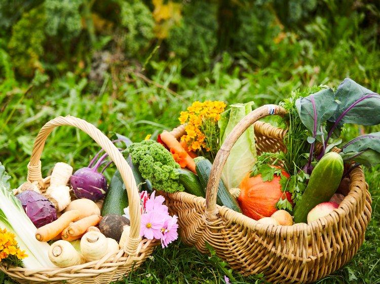 Regionale Bioprodukte im Allgäuer Biohotel