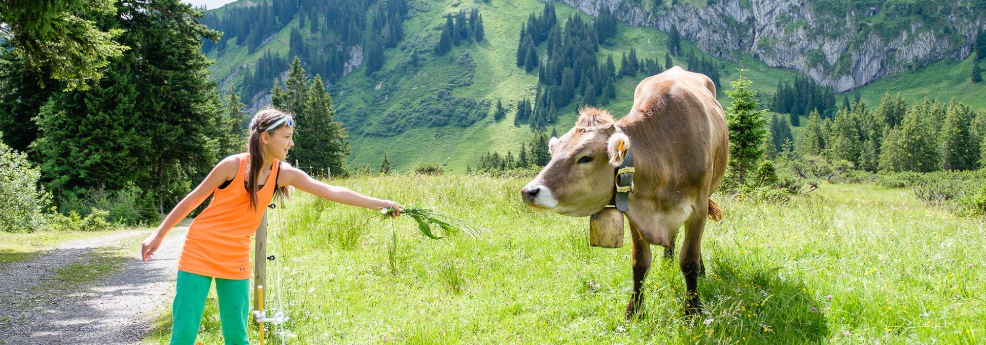 Angebote & Arrangements im Biohotel im Allgäu | Wandern, Wellness & Skiurlaub im Allgäu