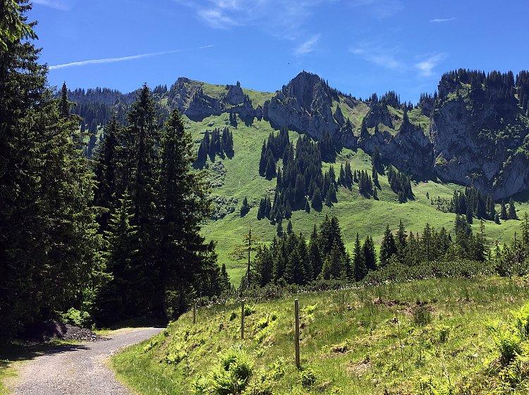 Bergtour zum Besler
