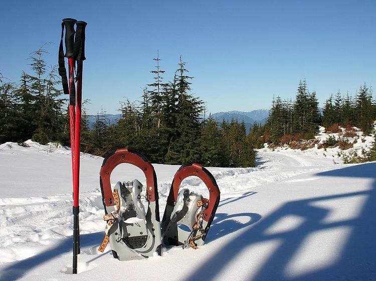Schneeschuh- und Winterwandern